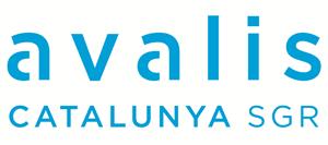 Financiación con Avalis